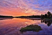 Abanakee Lake,Lake Abanakee,sunrise,spring,2017,Johnathan Esper,grass island,island,islet,grassy,reflection,brilliant,spectacular,