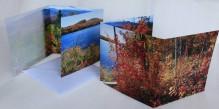 Thirteenth Lake,13th Lake,Mt. Jo,Heart Lake,notecard,autumn,Adirondack,lake,scenes,notecards