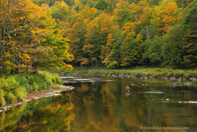 Ausable River,Au Sable River,fly-fishing,fly fisherman,fishing,fly fishing,Wilmington Notch,fall,2013