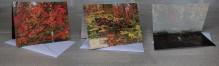Autumn Adirondack Colors Photo Notecard
