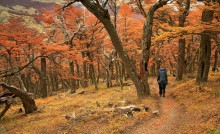 Backpacking in Patagonia in Autumn