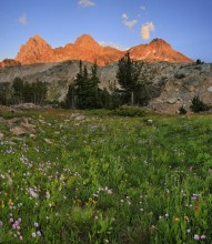 wildflowers,Grand Teton,Grand Teton National Park,landscape,grand,alpine,flowers,HDR,sunset,alpenglow,peaks,Tetons,backg