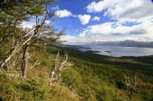 Beagle Channel, view, Isla Navarino, Chile, Patagonia, Tierra del Fuego