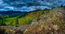 Big Slide Mt,The Brothers,trail,Great Range,springtime,spring,2013,Johns Brook Valley,Gothics,Big Slide,