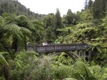 Bridge to Nowhere, Whanganui River, canoe, kayak, trip, New Zealand