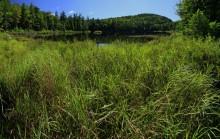 Bumps Pond and Sleeping Beauty Mountain