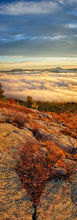 Cat Mt,Cat Mountain,Lake George,panorama,summit,rocks,fog,sunrise,valley,autumn,2015,Johnathan Esper,Adirondack Park,vertical panorama,Black Mt
