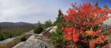 Catamount Mt autumn scene w Whiteface Mt