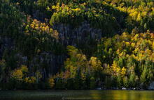 Chapel Pond and cliffs with birches in light