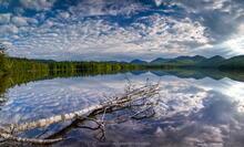 Clear Pond, Elk Lake Preserve, Elk Lake, Dix Range, white birch, log, birch, reflection, panorama,