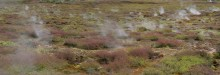 Craters of the Moon, park, Rotorua, New Zealand, steam, vents, ground, geothermal, activity
