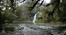 Fiordland National Park, waterfall, wilderness, Dusky Track, Henry Burn, stream, rainforest, Seaforth River valley,