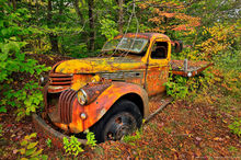 Essex Chain of Lakes,rusty truck,old truck,forest,truck,abandoned