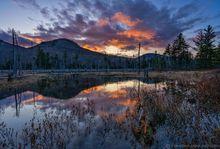 Fay Mountain Tract Bog April sunset