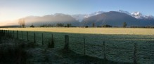 Fox Glacier, area, West Coast, pasture, fields, fence