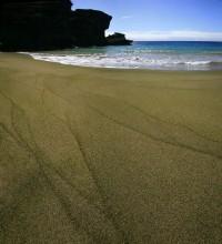 green sand beach, Hawaii, beaches