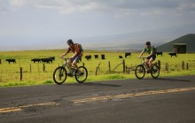 biking, sea to summit, Mauna Kea, Hawaii, riding, up, Saddle Road, highpoint, adventure