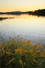 Horseshoe Lake,vertical,lake,Adirondack,Adirondack Park,wilderness,sunset,summer,calm,wildflowers