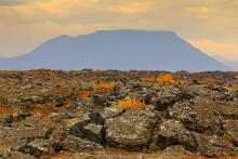 Myvatn region lava flows in autumn