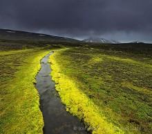 Mt Snaefell area highland stream, moss