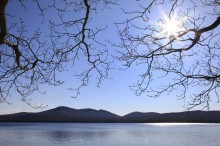 Lake Eaton,Owl's Head,Owl's Head Mt,Owls Head Mt,spring,branches,overhanging,lake,sunburst,bright,sunny,day,water,buds,s