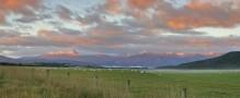 Lake Manapouri,Kepler Mountains,Te Anau,New Zealand,sheep,pasture,sunrise