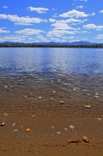 Autumn leaves floating on Lake Placid
