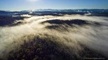 Long Pond Mt,St Regis Wilderness,fog,August,summer,morning,High Peaks