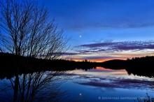 Mason Lake,tree sillouette,twilight,moon,glow,maple,maple tree,reflection,sunset,November,pond,