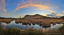 Moxham Mt.,Moxham Mt bog,bog,wetland,Adirondack wetlands,Moxham Mt,2018,fall,