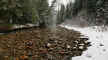 Coleville National Forest, eastern, Washington, winter, stream, rocky, snow, bank, river