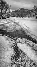 Opalescent River,Colden,Mt Colden,Flowed Lands,black and white,vertical panorama