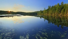 Rankin Pond,Adirondacks,Adirondack Park,bog,pond,lake,wetland,summer,sunset,panorama,sun star,Johnathan Esper