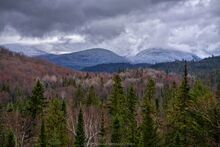 April snow on Whiteface Mt flanks with red hues of budding maples in early spring