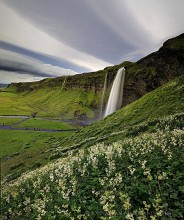 Seljalandsfoss, Iceland,wildflowers,clouds stripes