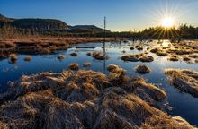 Silver Lake Mt,Silver Lake Mountain,bog,sunrise,March,2020,wetland,grasses,sunrise,