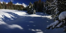 Continental Divide, Colorado, forest, pine, snowy, winter, tree, shadows, snow, on, Winter Park