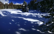shadow, patterns, snowy, forest, pine trees, Winter Park, Colorado, winter, Continental Divide