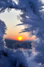 An icy sunset through frozen branches