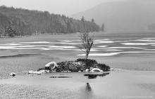 Tupper Lake,black and white,islet,grey,December,day,freezing,ice,freezing lake,lake,tree island,one tree