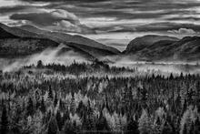 Wallface, Indian Pass, and Mt Marshall with layers of tamaracks and fog in November - black and whit