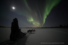 Dogsled under aurora borealis, Sweden