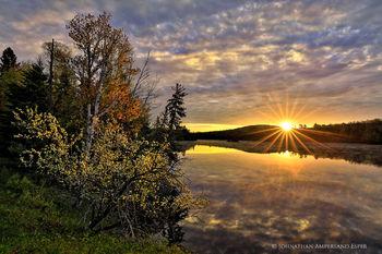 Abanakee Lake sunrise light on flowering crabapple tree
