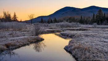 Alder Brook near Union Falls late winter