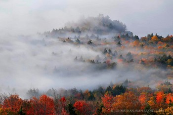 Bald-Rondaxe Mt forest fog in autumn