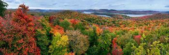 Big Moose Lake from a hemlock treetop on southern side