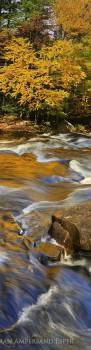 Buttermilk Falls gold reflection verticl