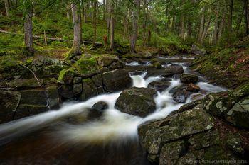 East Jimmy Creek near the East Branch Sacandaga River