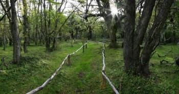 Omara Botanical Park Path
