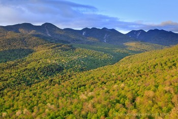 Great Range from Big Slide spring green